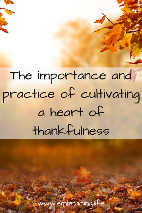 Cultivating a Heart of Thankfulness