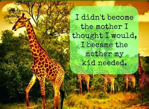 "Mother giraffe saying ""I didn't become the mother I thought I would be. I became the mother my child needed"