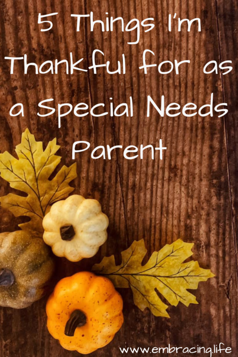 5 Things I'm Thankful for as a Special Needs Parent