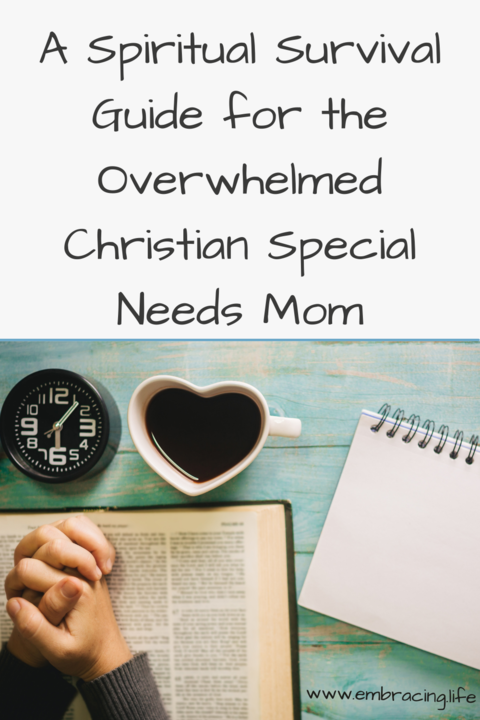 A spiritual survival guide for Christian special needs mothers