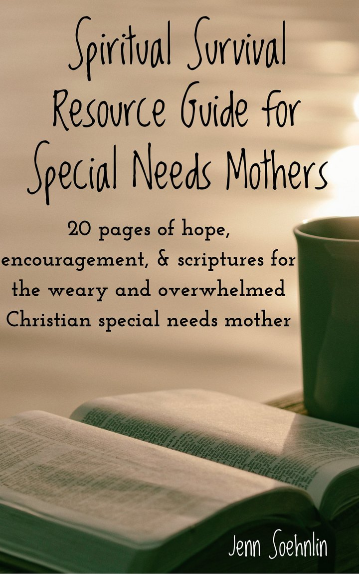 Spiritual Survival Guide for Christian Special Needs Mothers